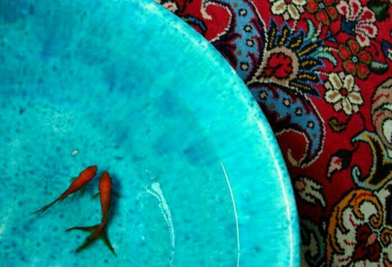 انشا طنز و غیر طنز ماهی در حوض قالی صفحه 55 نگارش نهم