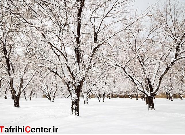 برف برخی از مدارس آذربایجان غربی را تعطیل کرد