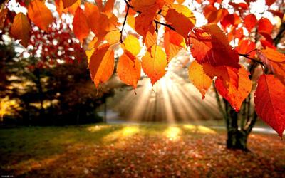 انشا درباره پاییز (صفحه 20 نگارش پایه هفتم)