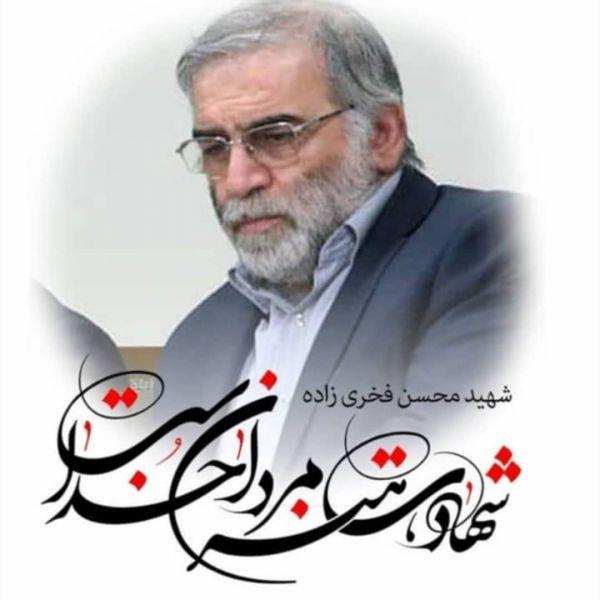 عکس پروفایل و استوری شهید محسن فخری زاده
