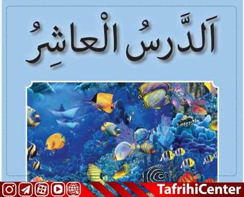 حل تمرین،گام به گام درس دهم 10 عربی هفتم [pdf] + ترجمه درس