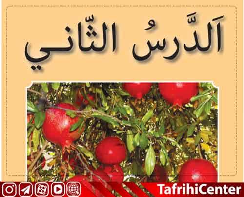 حل تمرین ،گام به گام درس دوم عربی هفتم [pdf] + ترجمه درس