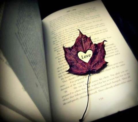 پیامک های جدید و زیبای عاشقانه با موضوع پاییز ۱۴۰۰