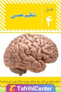 گام به گام فصل چهارم علوم هشتم (تنظیم عصبی) + [pdf]